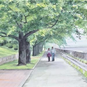 荒子川公園☆並木道
