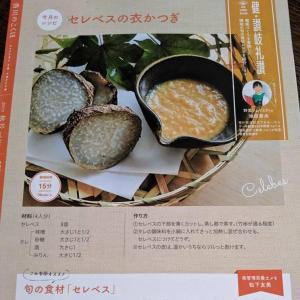 香川のこくほ レシピ掲載