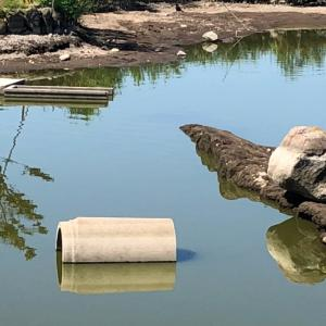 池の底のストラクチャー❗️