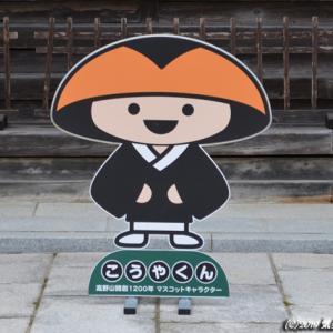 【HUSTLER de KOYASAN】高野山~金剛峯寺と奥の院へ~190916