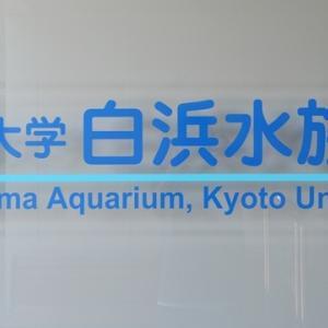 【HUSTLER de Drive】京都大学 白浜水族館@和歌山県西牟婁郡白浜町