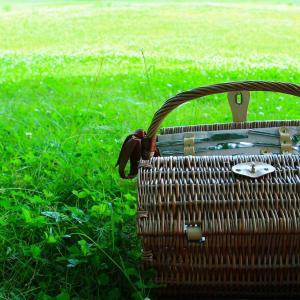 Take-away picnic