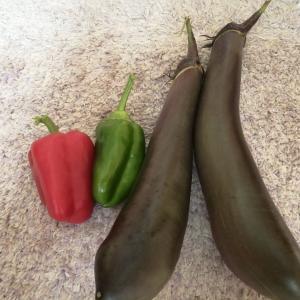 【家庭菜園】今日の収穫 茄子とピーマン