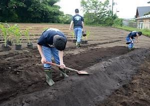 土壌流出対策