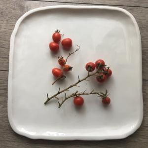 ベランダ菜園ミニトマト15個〜26個☆終わり