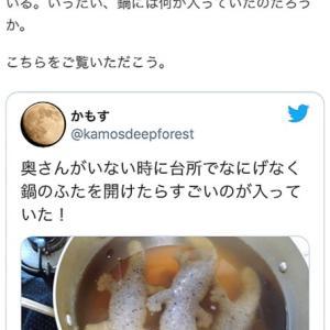 菜園野菜でピーマンの肉詰めトマトソース煮込み