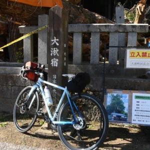 倒れてしまった新明神社の大杉(瑞浪市大湫)
