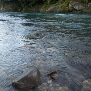 高水でのアユ釣り