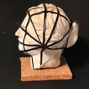 人体基本構造線(4)頭部構造線