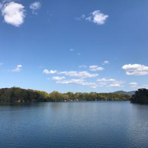 公渕池(きんぶちいけ)