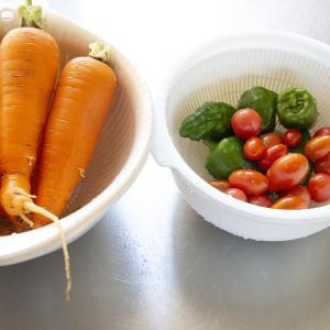まだ収穫できます/我が家の家庭菜園+薪ストーブの準備 #2405