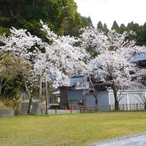 本屋親父のつぶやき 令和 2年 4月 5日 本日午前10時 春日神社で飯田小学校入学祭が斎行されました。