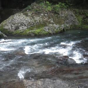 9月25日 亀尾島川・那比川でゼロ釣法でアマゴ釣りと少し鮎釣り!
