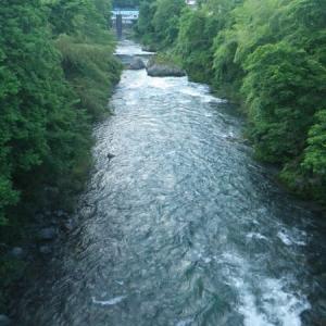 6月17日 那比川で鮎釣り!