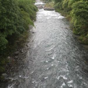 7月25日 まだ水位が高い那比川で鮎釣り!
