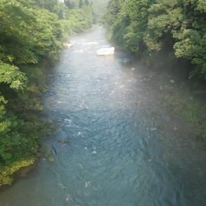 7月30日 水位が高い那比川で鮎釣り!