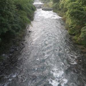 8月01日 那比川で鮎釣り!
