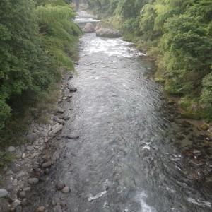 8月06日 那比川・亀尾島川で鮎釣り!