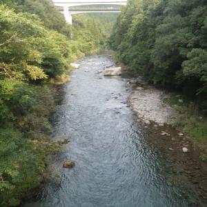 8月08日 亀尾島川で鮎釣り!
