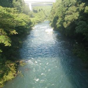 8月18日 那比川・粥川で鮎釣り!