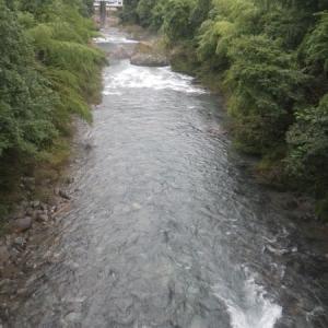 8月21日 亀尾島川・那比川で鮎釣り!