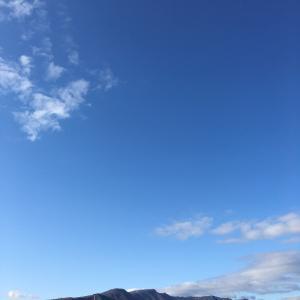 冬支度に入る手稲山と新川の堰堤散歩