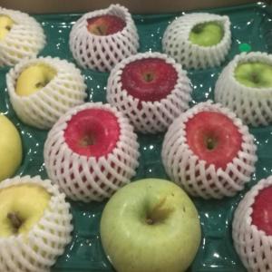 希少品種リンゴ収集記 グラニースミスは生でもアップルパイにしても至高だった