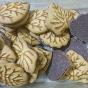 リーフビスケット ハーフチョコレート Leaves