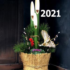 新年の抱負(だけ)