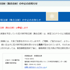 大牟田市からのお知らせ