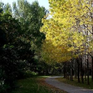 日曜日の園内を歩く ・・・