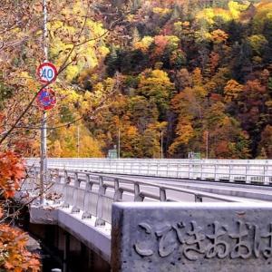 好きな橋です ・・・