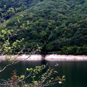 今日のダム湖 ・・・