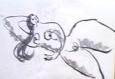 絵画<アトランダム> 「横たわる裸婦」(デッサン) 油絵屋大哲‐公式ホームページ