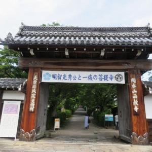明智光秀ゆかりの地№7~西教寺と坂本城