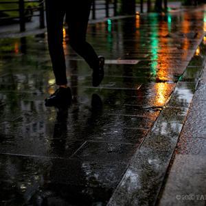 雨の御堂筋