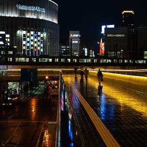 夜を彩る雨