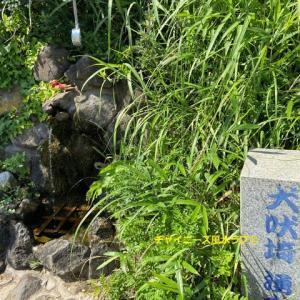 犬吠埼 湧き水 アクセス ~千葉県~