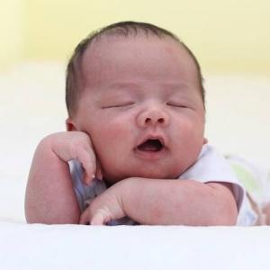 代理出産プログラム