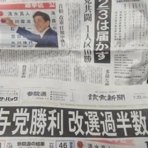 与党に甘い有権者(2019参院選)