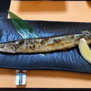 """初""""秋刀魚"""""""