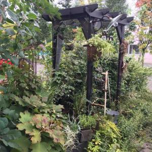 植物と古物のお庭