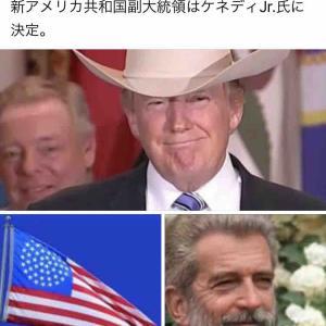 せんねん灸とアメリカ大統領選