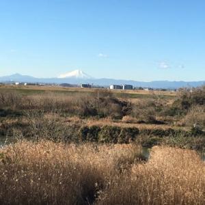 物見山へ行きました