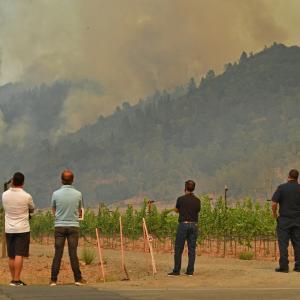 思い出の 「Meadowood Napa Valley resort」が…焼けてしまった