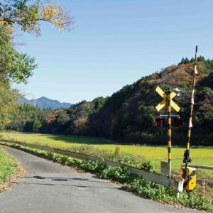 11月の晦日鉄 「参道」踏切で締める