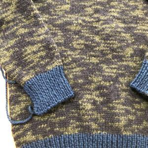 パピーのジャングルでメンズのセーター!