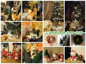 クリスマスツリー 2019