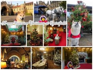 A very Victorian Christmas at Tyntesfield 2019