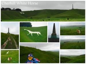 チャーヒルの白馬